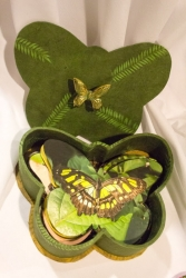 Niagra Butterflies - Lorraine Crowder