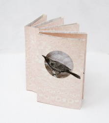 Birdie Shadowbox Book - Kit Davey