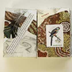 200621-LCC-Bird-Book-2315-master-Edit