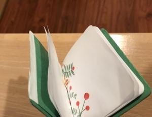 Kadambi-HollyDay-stab-binding-2021-v2