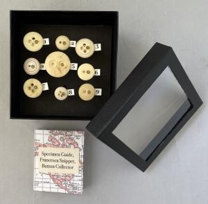 Kit-Davey-The-Button-Collectors-Specimen-Box-View-1