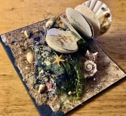 Miniature Shell Book