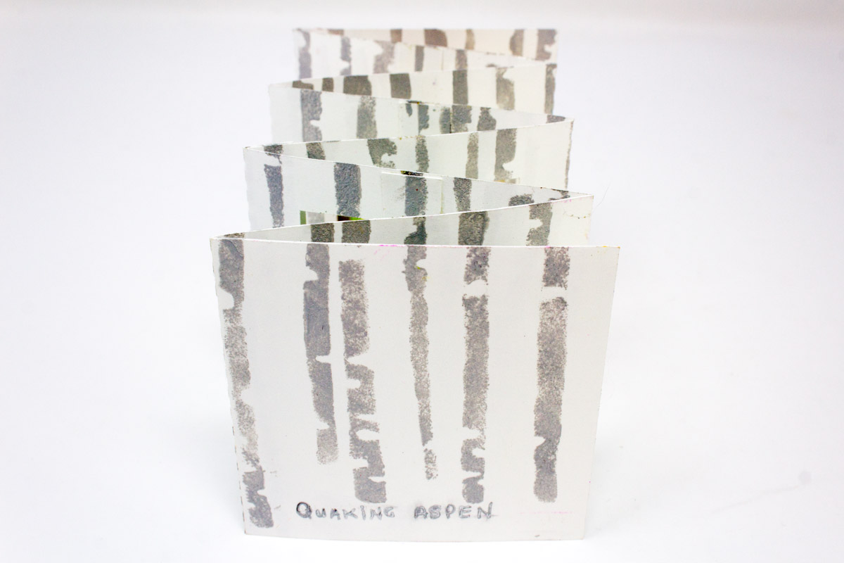Marie-Heatherington-Quaking-Aspens-2021_a