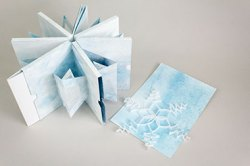 Virginia Phelps - Blizzard Book – Multisection Slipcase & Fishbone Fold